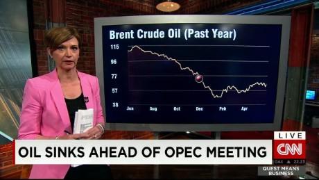 exp Quest Means Business, oil, Dr Fesharaki , OPEC< Saudi Arabia _00002001