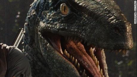 Chris Pratt stars as Owen in Universal Pictures#39; Jurassic World (2015)