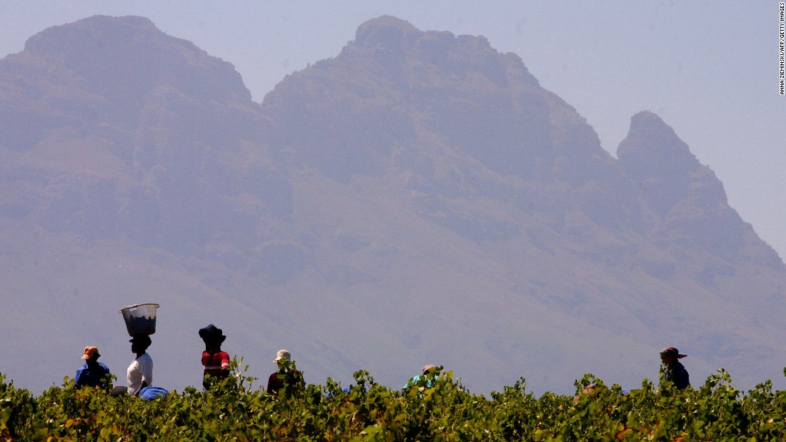 "One aspect that sets South Africa's wine industry apart is the ubiquity of ethical accreditations. It is the largest producer of Fairtrade wine -- <a href=""http://www.fairtrade.org.uk/en/media-centre/news/september-2016/fairtrade-at-wines-of-south-africa-trade-tasting-event"" target=""_blank"">accounting for two-thirds</a> of global sales."