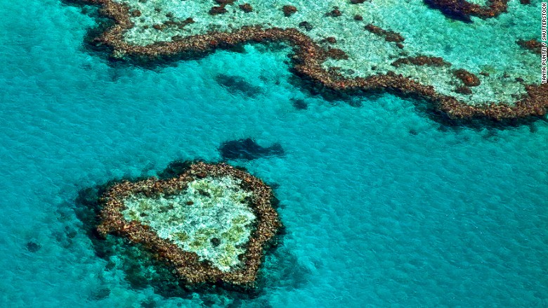 A 1,600-mile sweep of of coral, the Great Barrier Reef is a magnet for divers with more than 400 species or marine life spanning from great baleen whales to thorny urchins.