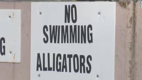 deadly texas alligator attack bts_00003626