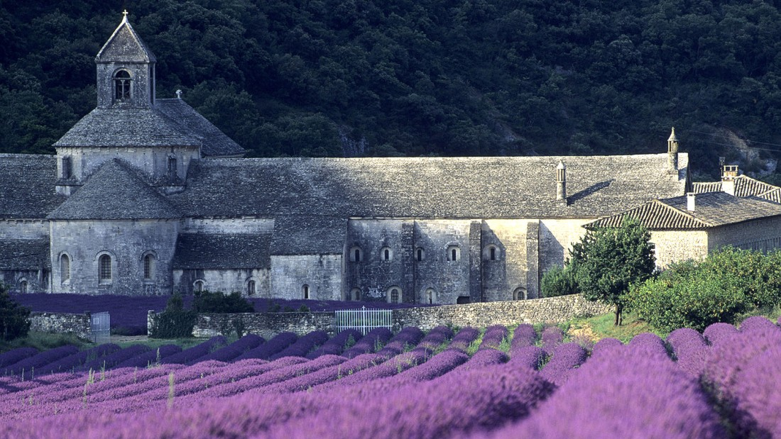 Summer finds France's southern Provence region basking in a glorious heat that draws vacationers from across France and beyond. Inland from the region's glorious coastline, beautiful lavender fields like these behind the 12th century Cistercian abbey of Sénanques fill the air with their aromatic scents.