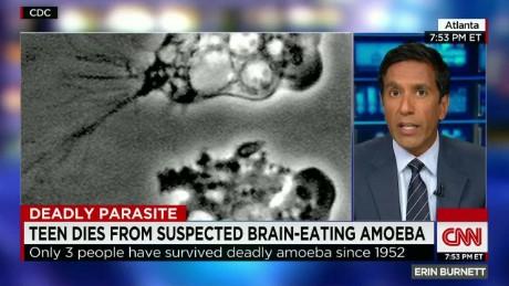 Brain eating amoeba_00043611