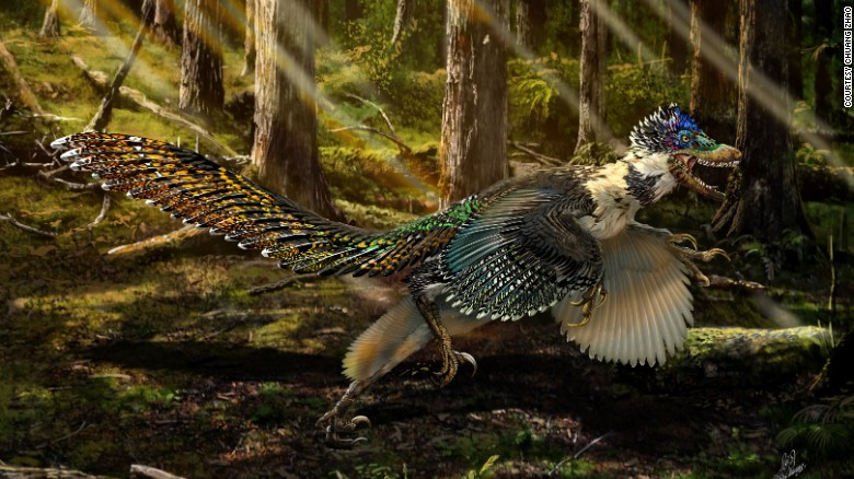 New winged dinosaur discovered in China