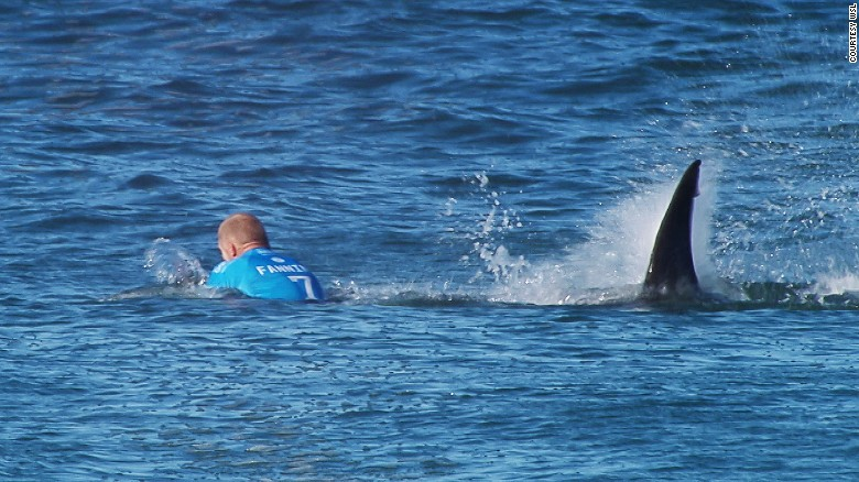Surfer Mick Fanning escapes shark attack