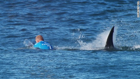 """EFFREYS BAY, South Africa (Sunday, July 19, 2015) --   Mick Fanning Of Australia is attacked by a shark during the Final of the JBay Open on Sunday July 19, 2015. Screengrab © WSL The images attached or accessed by link within this email (""""Images"""") are the copyright of the Association of Surfing Professionals LLC (""""World Surf League"""") and are furnished to the recipients of this email for world-wide editorial publication in all media now known or hereafter created. All Images are royalty-free but for editorial use only. No commercial or other rights are granted to the Images in any way.  The photo content is an accurate rendering of what it depicts and has not been modified or augmented except for standard cropping and toning. The Images are provided on an """"as is"""" basis and no warranty is provided for use of a particular purpose. Rights to an individual within an Image are not provided. Sale or license of the Images is prohibited. ALL RIGHTS RESERVED."""