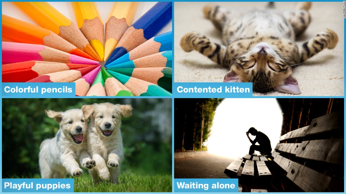 "<br />A:  If you picked the kitten or pup, your brain may be wired to be happy. <a href=""http://scan.oxfordjournals.org/content/9/6/760"" target=""_blank"">Studies</a> show people who have happy brains respond more to positive things than negative or neutral ones."