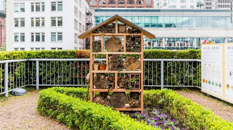 From May to September, Fairmont Waterfront guests can join a daily tour of the apiary and rooftop garden with a resident bee butler.
