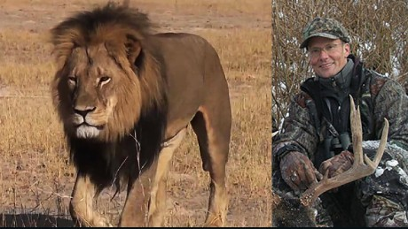 Cecil the lion's killer insists hunt was legal