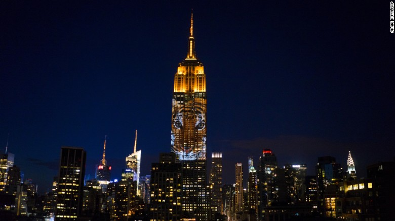 Endangered animals light up Empire State