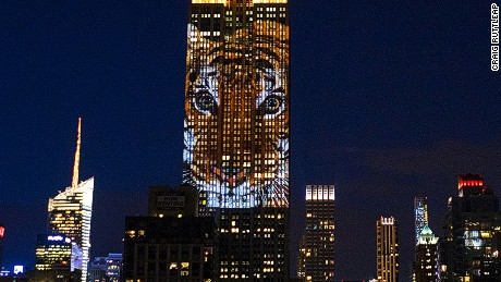 Endangered animals light up Empire State