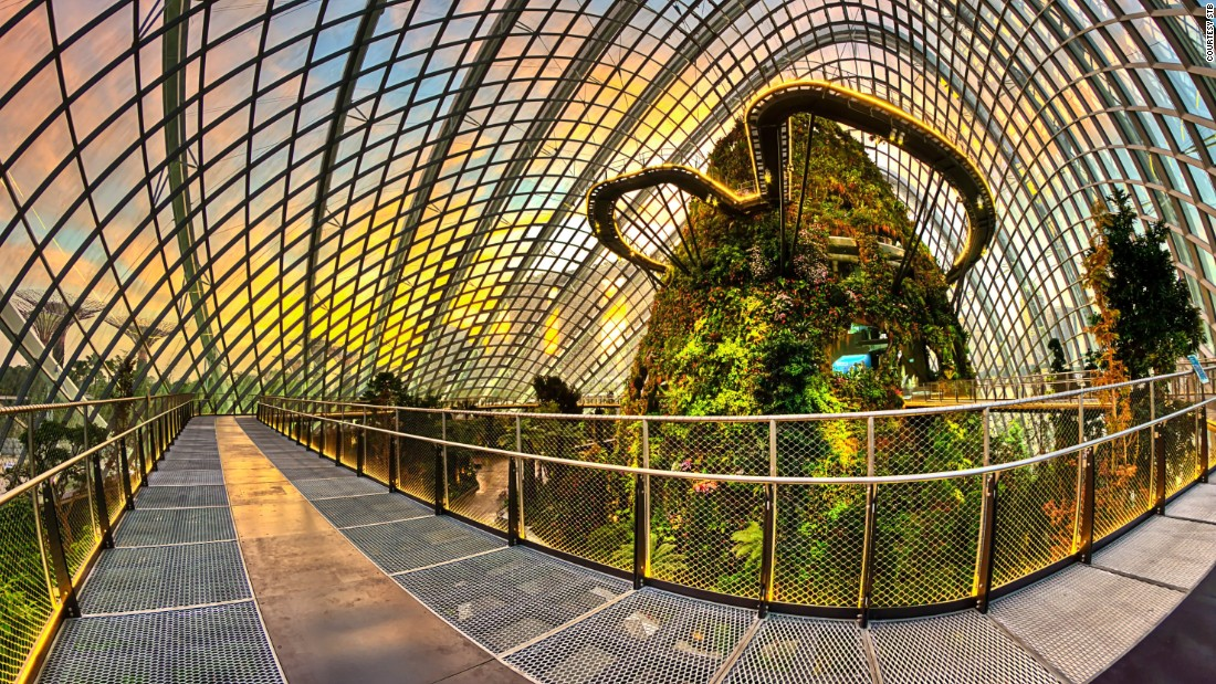 50 reasons singapore is the world 39 s greatest city for Indoor gardening singapore