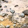 colorado river evans matthew