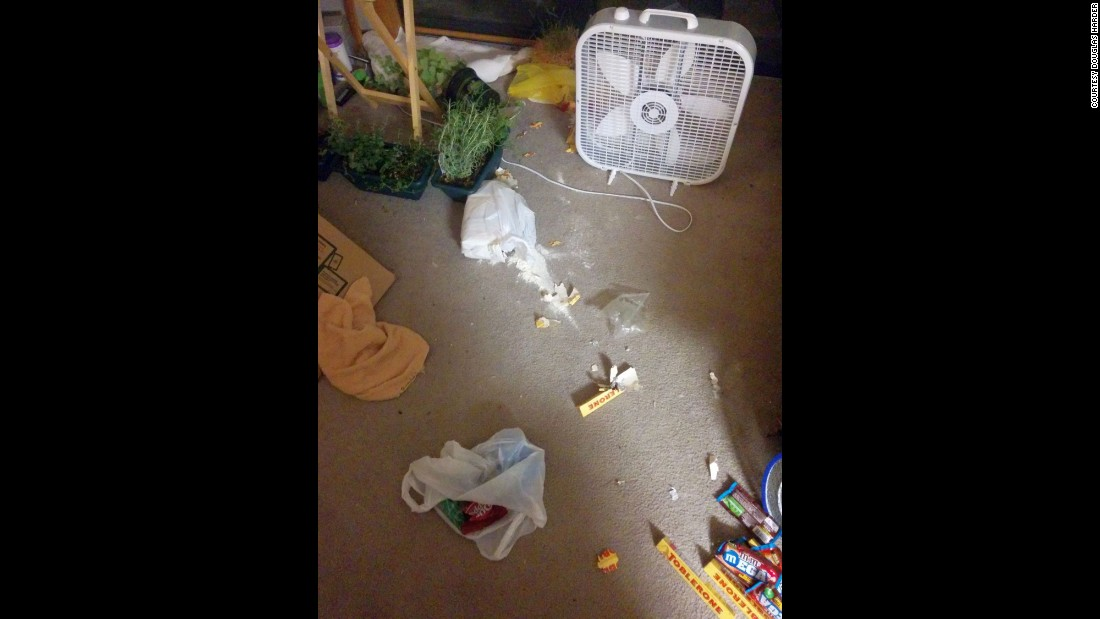 Harder came home Wednesday to find his home in disarray. A bear got into a bag of flour, brownie mix and a Toblerone bar.