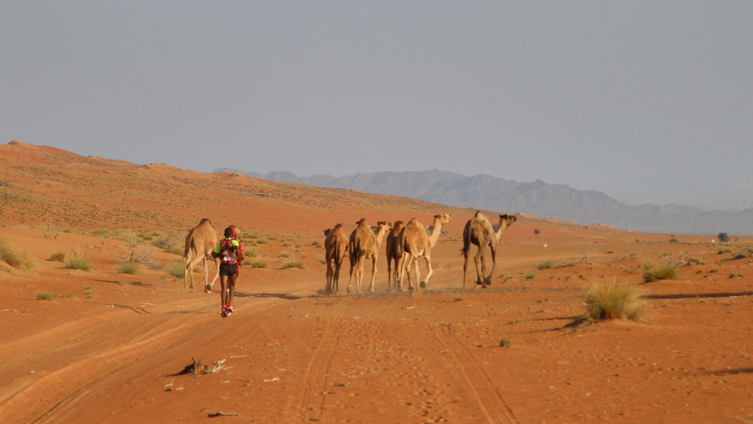 The Oman Desert Marathon.