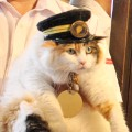 Nitama new stationmaster