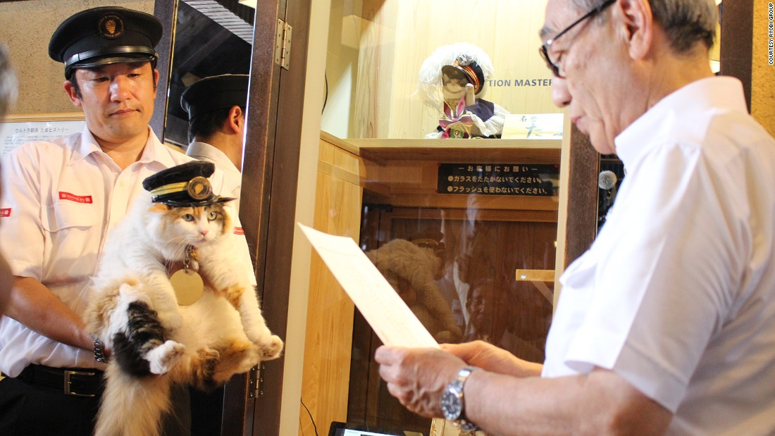 """Nitama, the new stationmaster of Kishi Station in Wakayama Prefecture, has been praised for her """"hat-wearing"""" skills."""