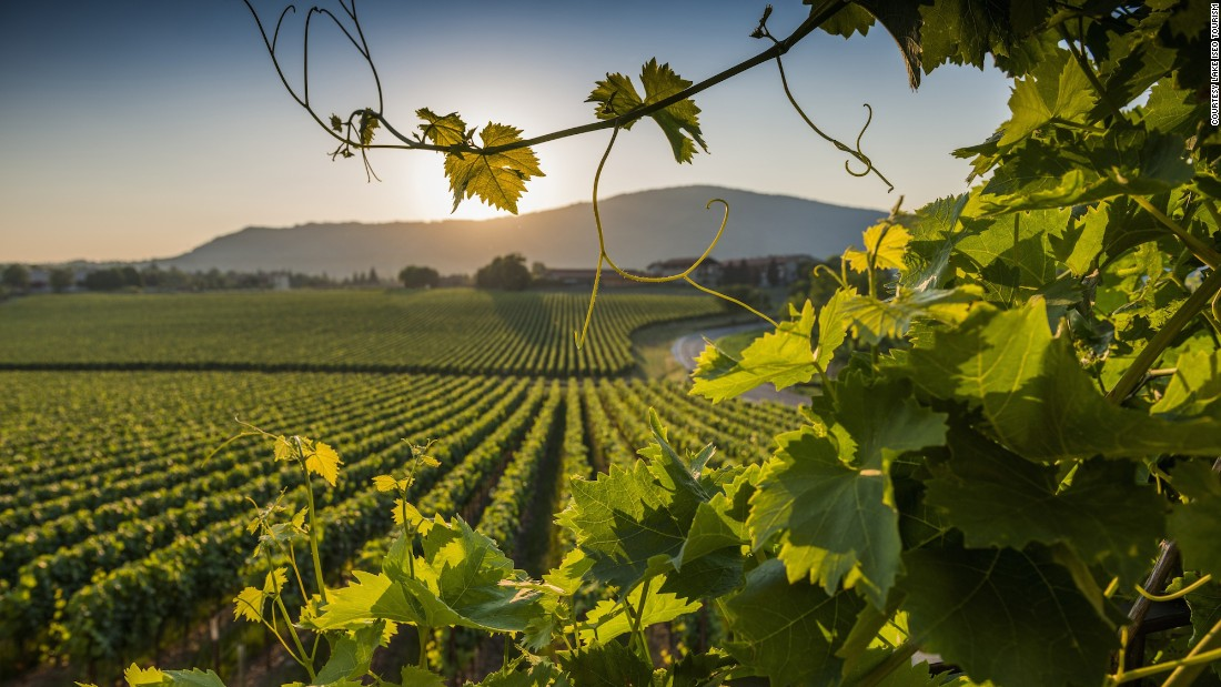 Like Champagne, Italy's Franciacorta is both a geographical region and a wine. The wine is made using methode champenoise -- a special way of getting it to sparkle -- and with the same grape varietals as chardonnay, pinot noir and pinot blanc.