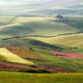 3. Wine regions Sicily
