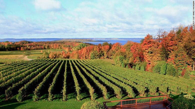 Sometime soon someone may fill your glass with a Michigan wine.