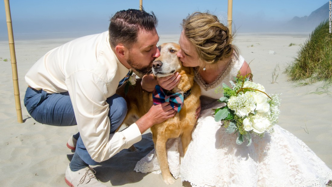 "Dood the dog did a ""fantastic job as the ring bearer"" at Cassidy Williams' wedding in early August. ""It was really precious,"" she said. The event was bittersweet, because Dood had recently been diagnosed with terminal cancer."