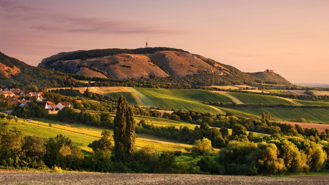 Moravia, Czech Republic. Though the Czech Republic is better known for beer, its easternmost province of Moravia, just north of the Austrian border, has quietly been producing some of the world's best white wines for years.