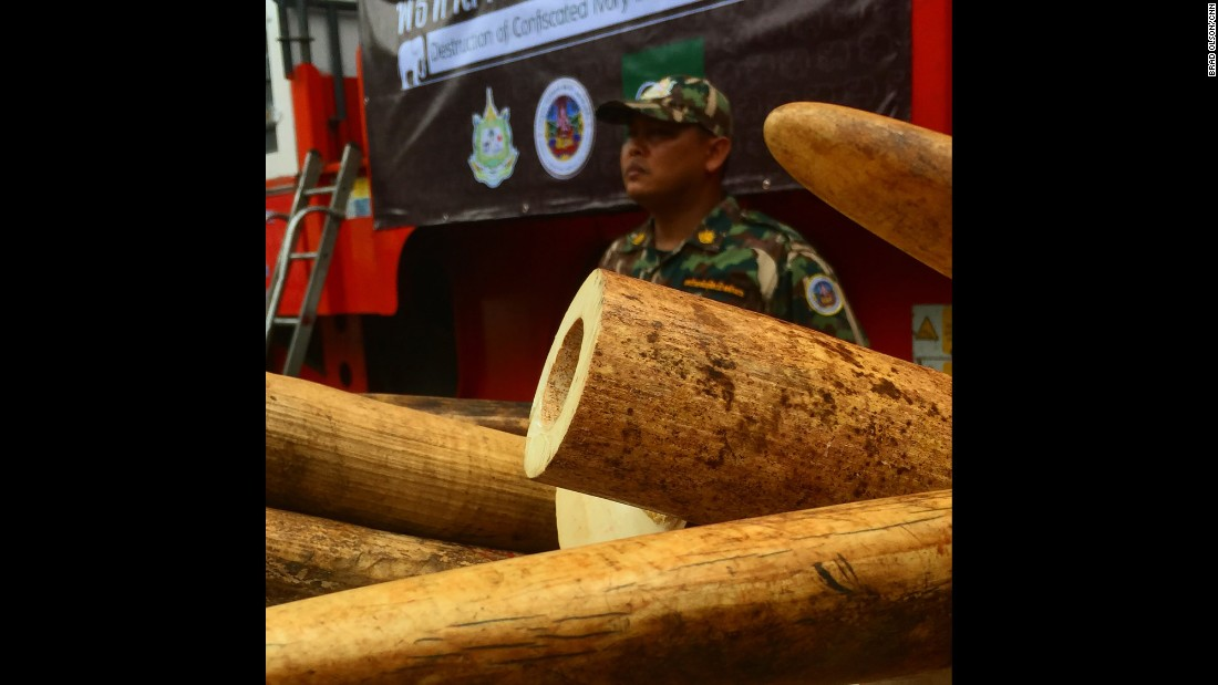 "THAILAND: ""Save the elephants! I'm at a ivory crushing ceremony today in Thailand. They have a about 2 tons of ivory that was seized from criminals. 200 elephants would have died to produce this much illegal ivory."" - CNN's Brad Olson.<br />Follow <a href=""http://instagram.com/cnnbrad"" target=""_blank"">@cnnbrad</a> and other CNNers on the <a href=""http://instagram.com/cnnscenes"" target=""_blank"">@cnnscenes</a> gallery on Instagram for more images you don't always see on news reports from our teams around the world."