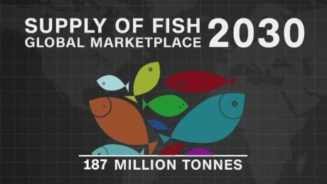 spc africa view world fisheries_00001811