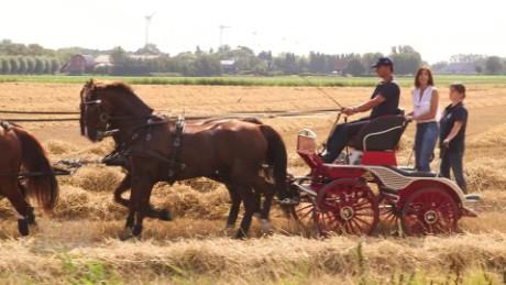 spc cnn equestrian european championships b_00043416