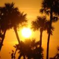 Golf sunsets gal 3