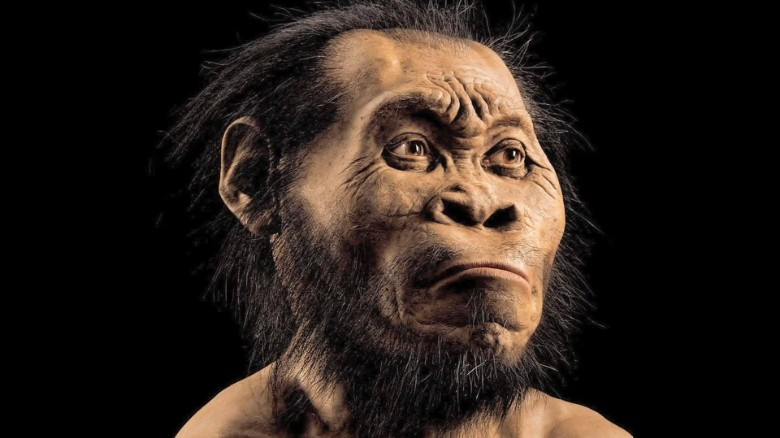 human ancestor species discovered south africa mckenzie pkg_00002221