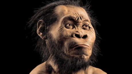 human ancestor species discovered south africa mckenzie pkg_00002221