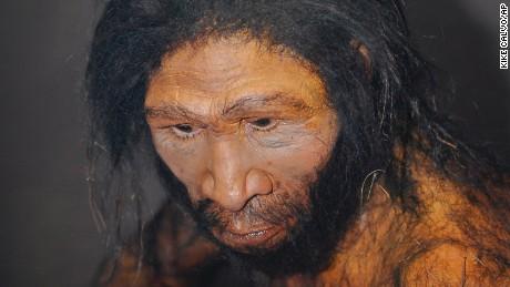 Australopithecus who homo naledi is related to me cnn com