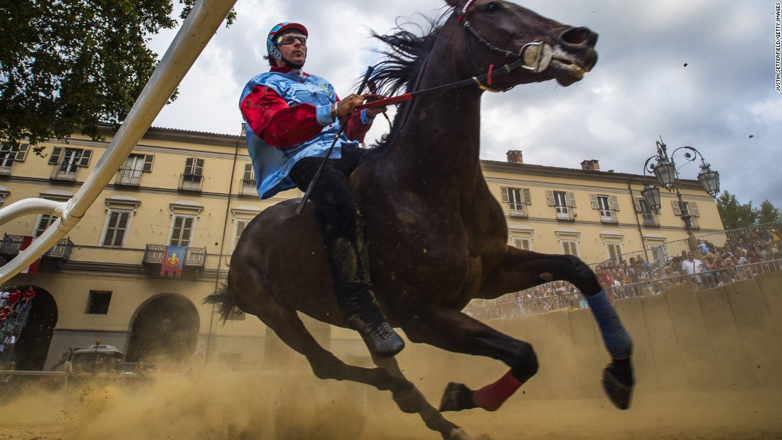 A horse and jockey take part in the Palio di Asti trials Saturday, September 19, in Asti, Italy. The Palio di Asti is the oldest bareback horse race in Italy. It has been run since the 13th century.