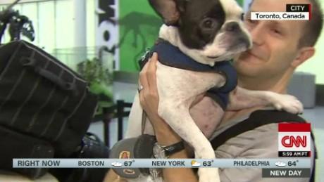 Pilot saves dog Good Stuff NewDay_00002120