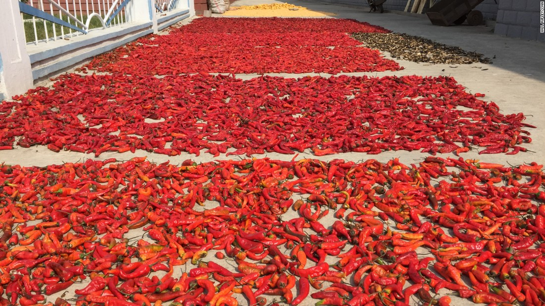 Chili peppers lie in the sun at the Jang Chon farm. It's used for making kimchi, the fermented cabbage dish that is a staple of the North Korean diet.