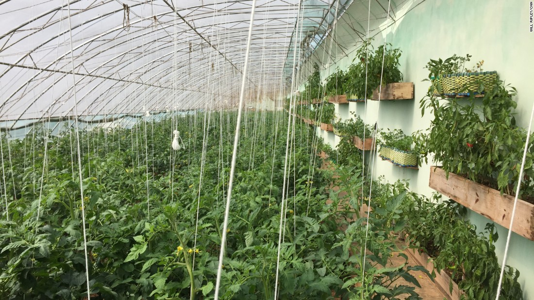 The farm is home to one of North Korea's first greenhouses. It was first visited by Kim Il Sung more than three decades ago, and more recently by his grandson, current leader Kim Jong Un.