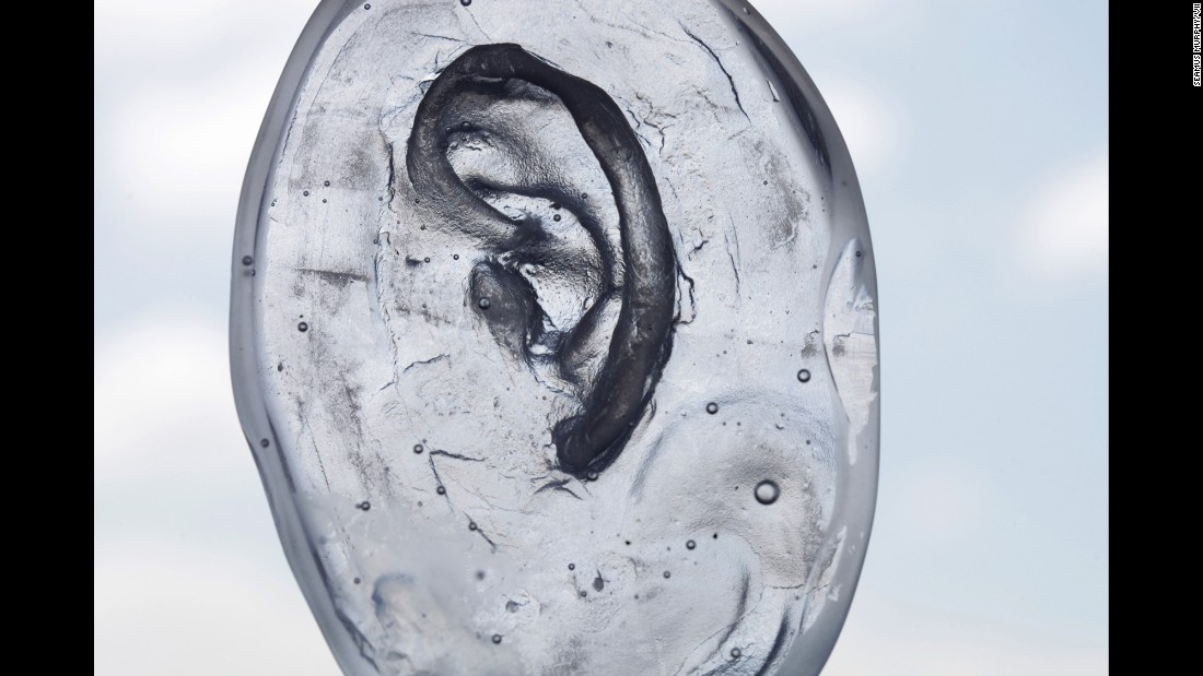 A glass mold of an ear.