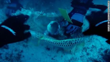 Shipwreck reveals lifestyle of ancient '1 percent'
