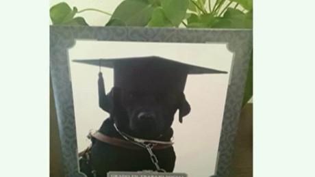 cnnee vo cafe oraa tendencies dog graduates from college_00001317