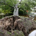 03 east coast flooding