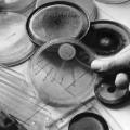 11 medical innovations penicillin