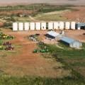 waggoner tractors farming