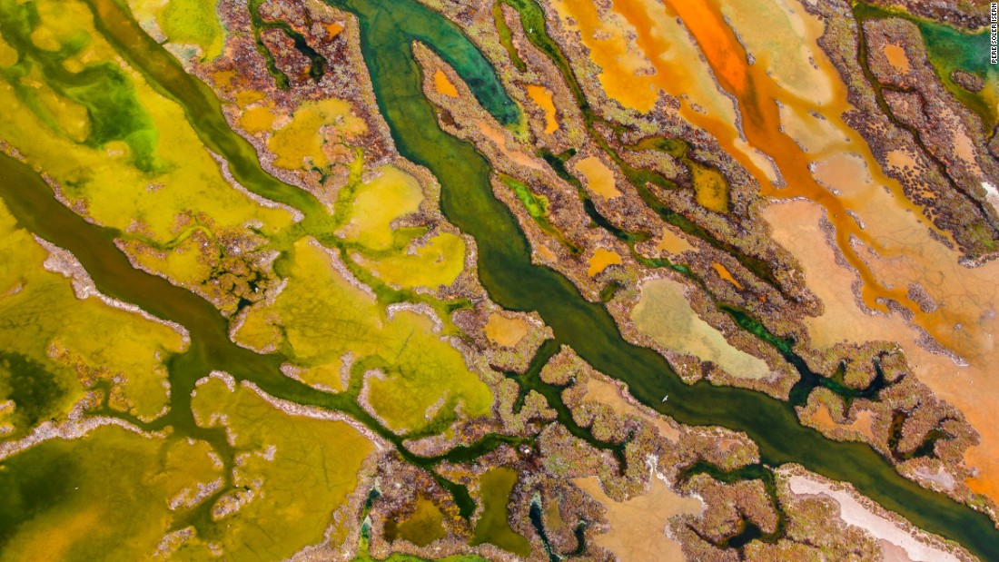 <strong>Category: From The Sky</strong><br />The art of algae by Pere Soler, Spain.<br />The aerial view of marshland in Andalucia bursting with intense colour, creating a rich tapestry of textures and patterns.