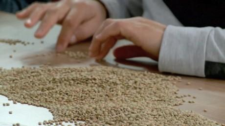 syria doomsday seed vault damon pkg_00002728
