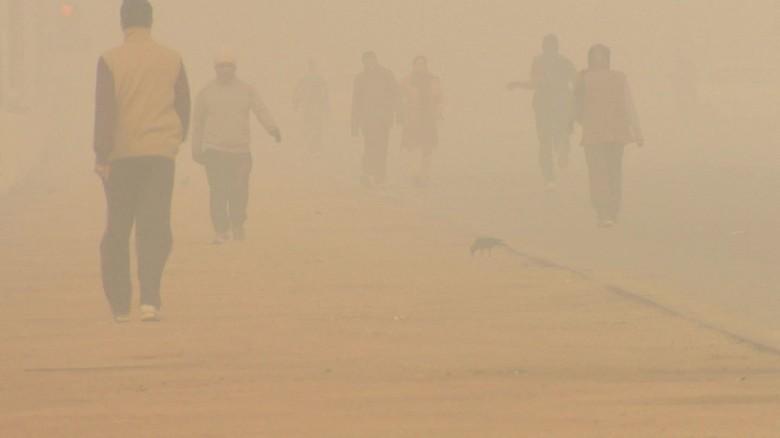 Battling Delhi's air pollution