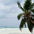 Top 10 African economies -- Seychelles
