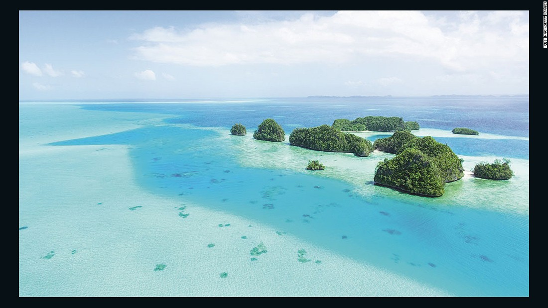 "Palau's diving and snorkeling opportunities have led some to call it ""the underwater Serengeti."""