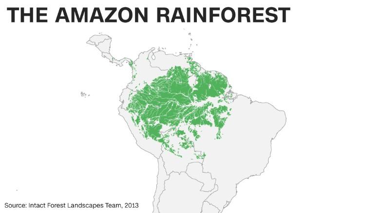 Tibet News Website   Inside Brazil's battle to protect the ...