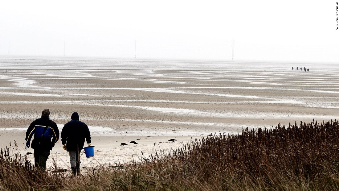 The wild oysters caught on safaris in the Wadden Sea and in the bays of Limfjorden are only for private consumption, due to regulations limiting their sale.